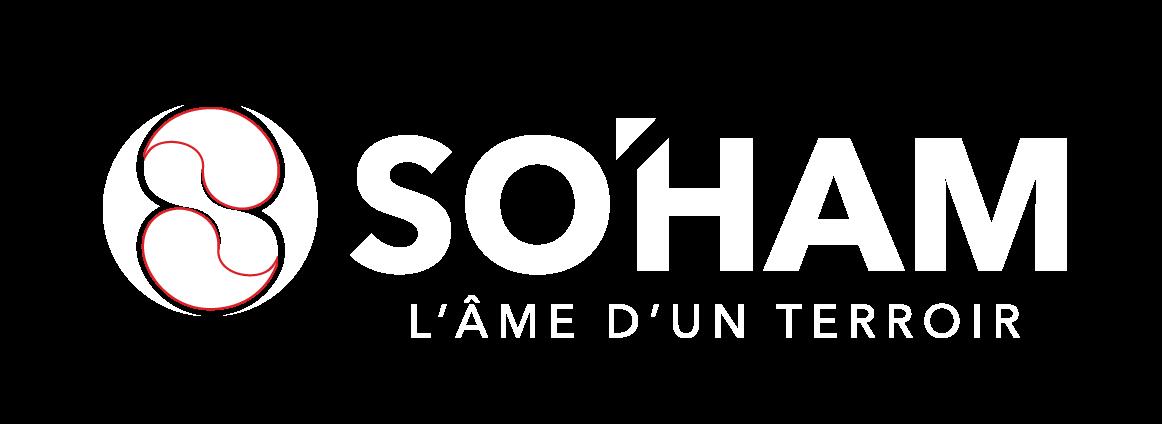 Voici le logo Blanc de la société So'Ham